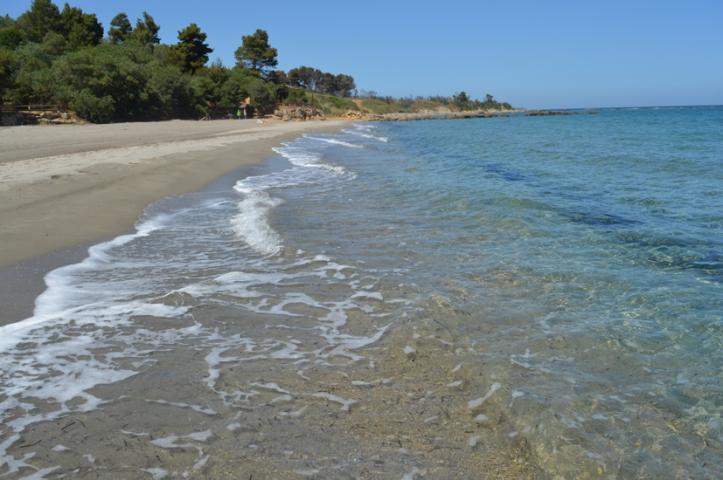 wcrot-spiaggiaQUESTA